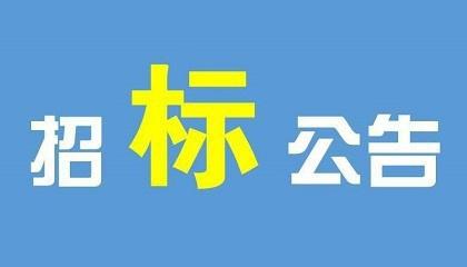 广东石化全密度聚乙烯、聚丙烯装置精制床支撑瓷球国际招标公告